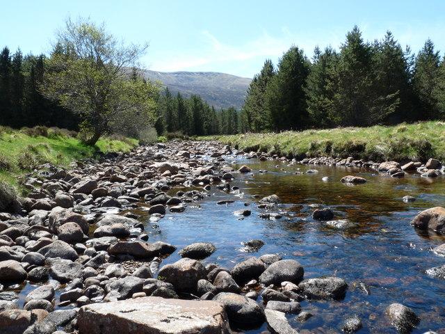 The Allt Lochan Fhudair, Glengarry Forest