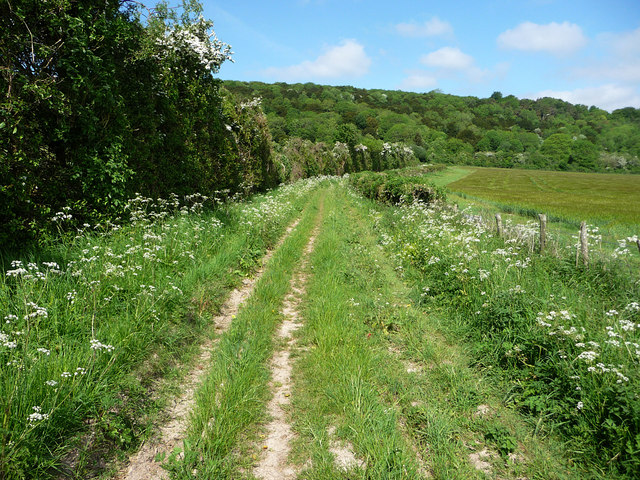 Track near Brickkiln Farm