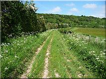 SU8312 : Track near Brickkiln Farm by Chris Gunns