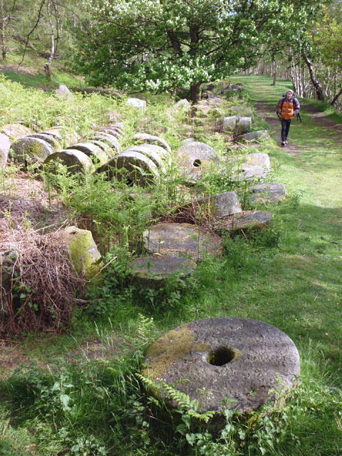 Millstones by the track, Bolehill Quarry (Lawrencefield)