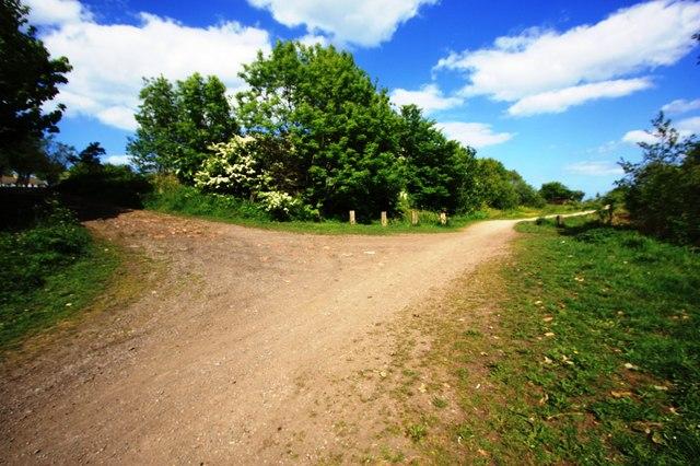 Track junction near Hesleden