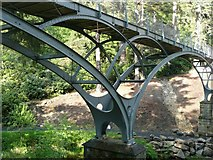 NU0702 : Detail of the iron bridge, Cragside by Humphrey Bolton