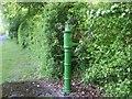 N9654 : Pump, Co Meath by C O'Flanagan