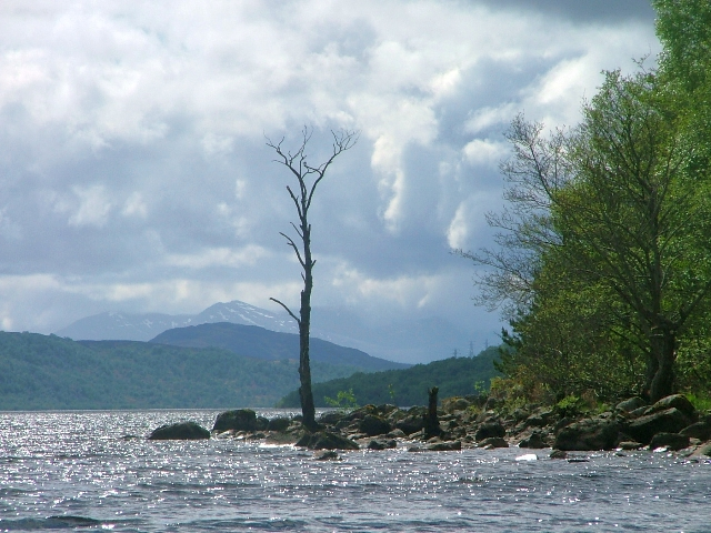 Loch Rannoch Shoreline