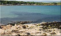 D4303 : The coast at Brown's Bay, Islandmagee (1) by Albert Bridge