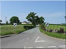 SJ2618 : Road near Four Crosses by Alex McGregor