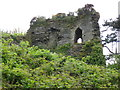 SN0538 : The ruined part of Newport Castle by Derek Voller