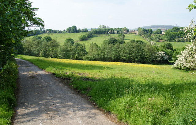 Lane down to Bottoms Hall Farm