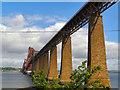 NT1378 : Forth Rail Bridge by David Dixon