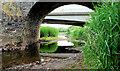 J3269 : The low Lagan, Shaw's Bridge, Belfast (3) by Albert Bridge