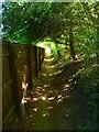 SU3443 : Anna Valley - Footpath by Chris Talbot