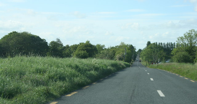 The R371, County Roscommon (5)