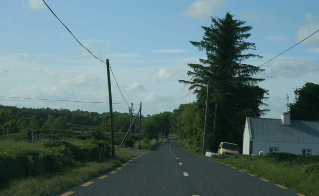 The R371, County Roscommon (6)