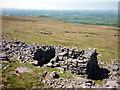 NY7129 : Ruin near Knock Hush, Green Fell by Karl and Ali