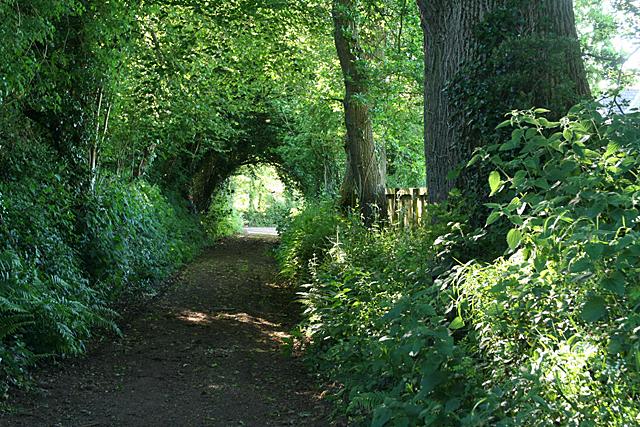 Cullompton:  Goblin Lane