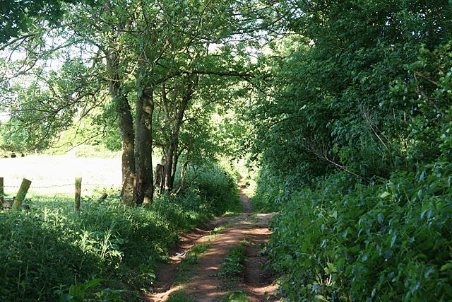 Cullompton:  Goblin Lane 2