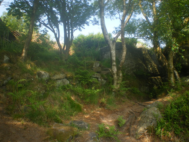 Shade of trees and Millstone Grit - Brimham Rocks