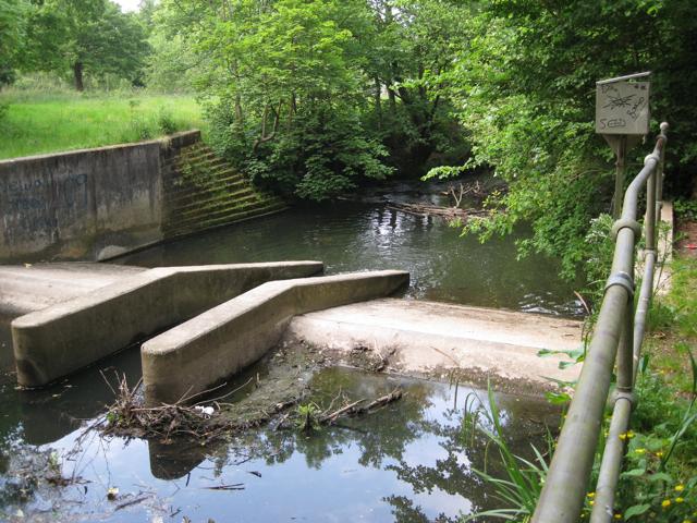 Weir, Micker Brook, Cheadle