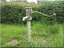 O1451 : Pump, Co Dublin by C O'Flanagan