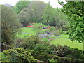 NR6447 : Borders round lawns, Achamore Gardens by David Hawgood