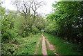TA0089 : Tabular Hills Walk along the Sea Cut by N Chadwick
