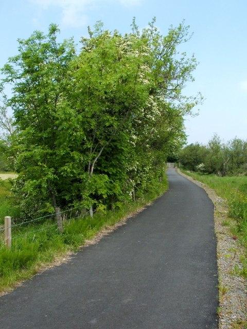 Cycle Route 7 near Dalmoak Farm