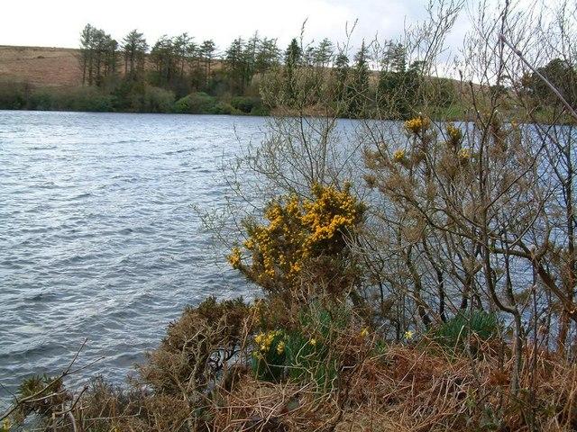 Looking across Venford Reservoir