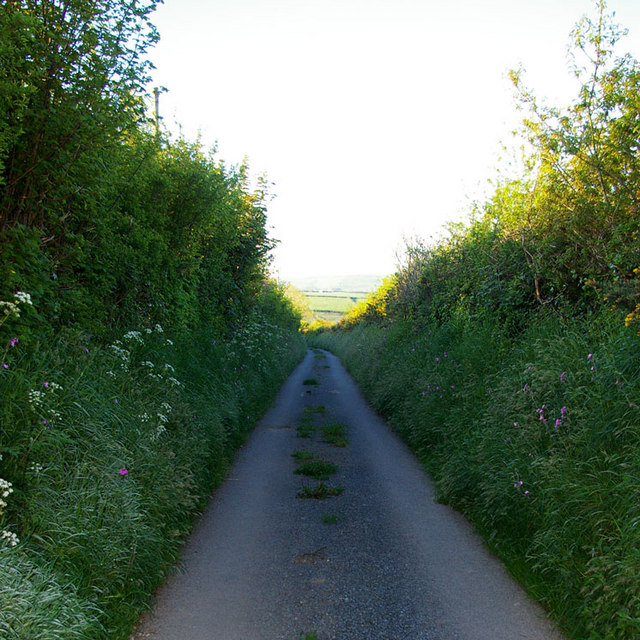Lane from Lower Broadmoor to Wolf's Castle