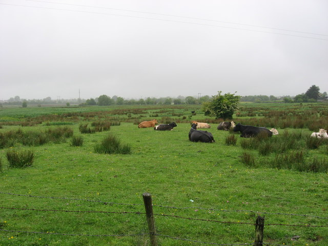 The Commons of Duleek, Co. Meath