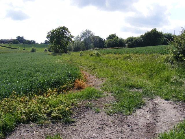 Footpath to Low Grange Farm