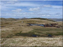NN6544 : Large peaty pool on Meall Greigh's west ridge by Richard Law