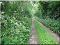 O1269 : Farm track at Dardistown, Co. Meath by Kieran Campbell