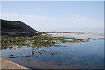 TA0390 : Seafront view to Scalby Ness by N Chadwick
