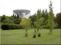 SJ7971 : Telescope viewed from Botanical Gardens by Neil Owen