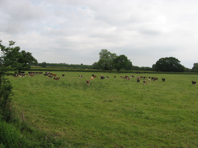 Field beside Swindon & Cricklade Railway's northern extension