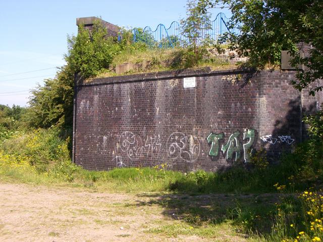 Mersey Vale Nature Park, Bridge Remains