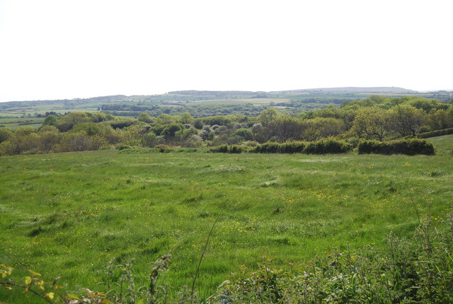 Pasture land by the old railway