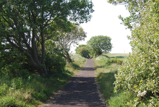 The old railway line by N Chadwick