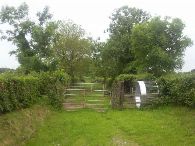 Country Lane, Co Meath
