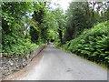 C2441 : Road at Lurganboy by Kenneth  Allen