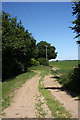 TL6260 : Track opposite Hall Farm Cottage by Bob Jones