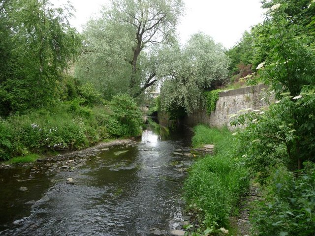 Water of Leith looking downstream by Christine Johnstone