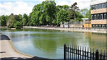 SP0683 : Lake in Cannon Hill Park by Michael Westley