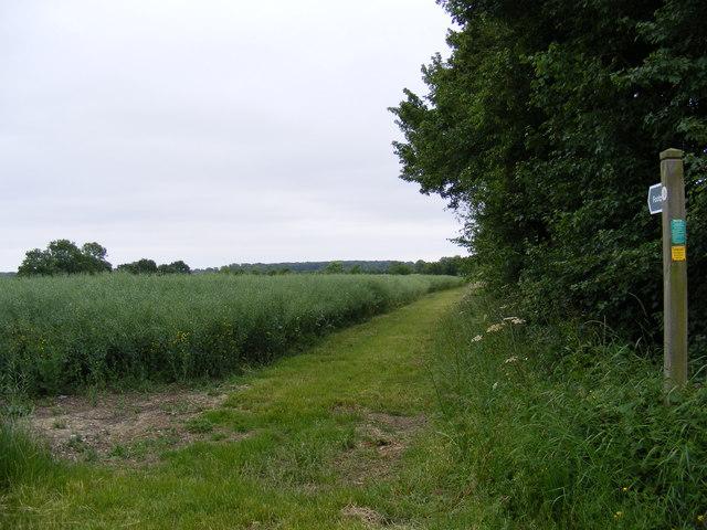 Footpath to Willow Marsh Lane