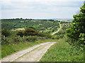 TQ5401 : Track through Lullington Heath Nature Reserve by Oast House Archive