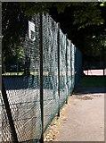 SX9164 : Sunlight on fence, Upton Park by Derek Harper