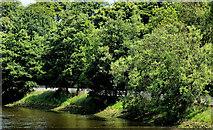 J3472 : The Ormeau Embankment, Belfast by Albert Bridge