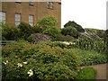 NZ0878 : Belsay Hall Terraced Garden by michael ely
