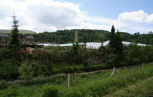 The back of Gordon Rigg Garden Centre