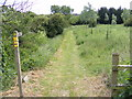 TM3470 : Footpath Diversion to Heveningham Long Lane & Mill Road by Adrian Cable